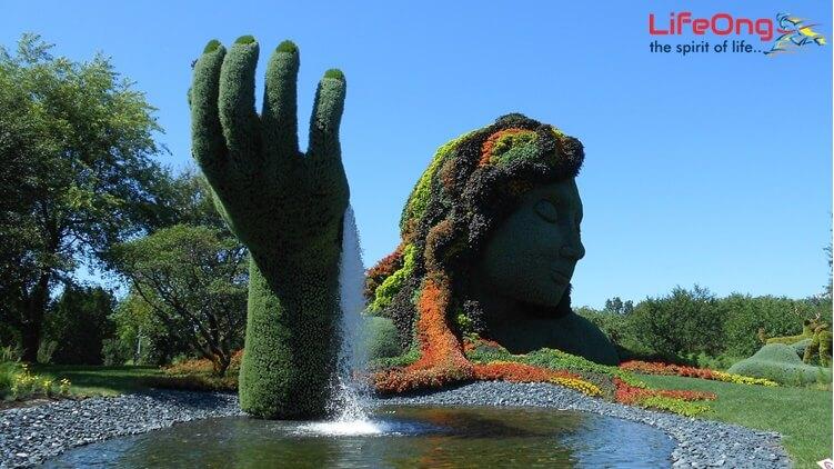 Jardin Botanique Montreal S